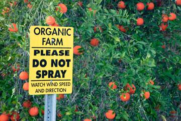 organic-pesticides-2