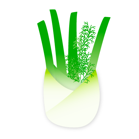 fennel icon
