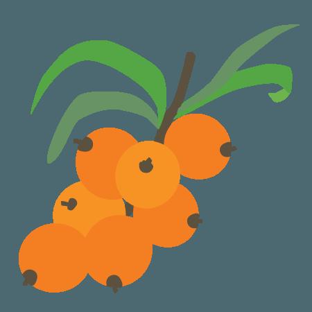 duindoornbes icoon