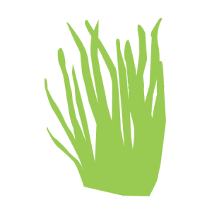 tarwegras icoon