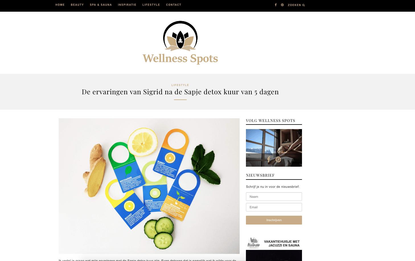 wellness spots review