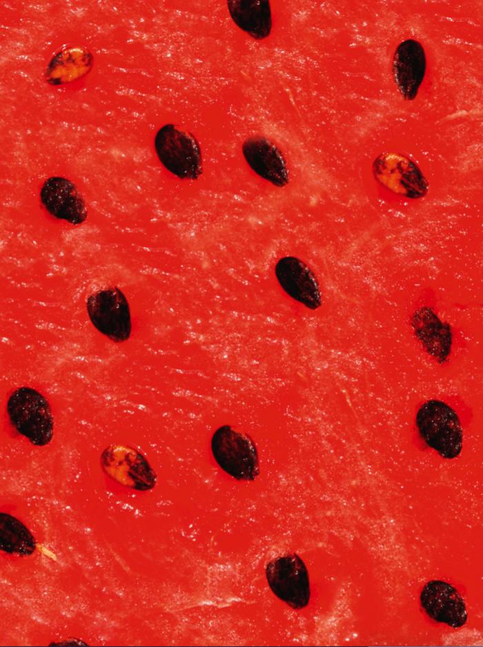 watermeloen van dichtbij
