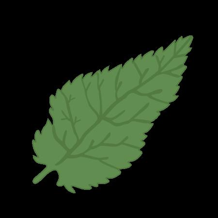 brandnetel icoon