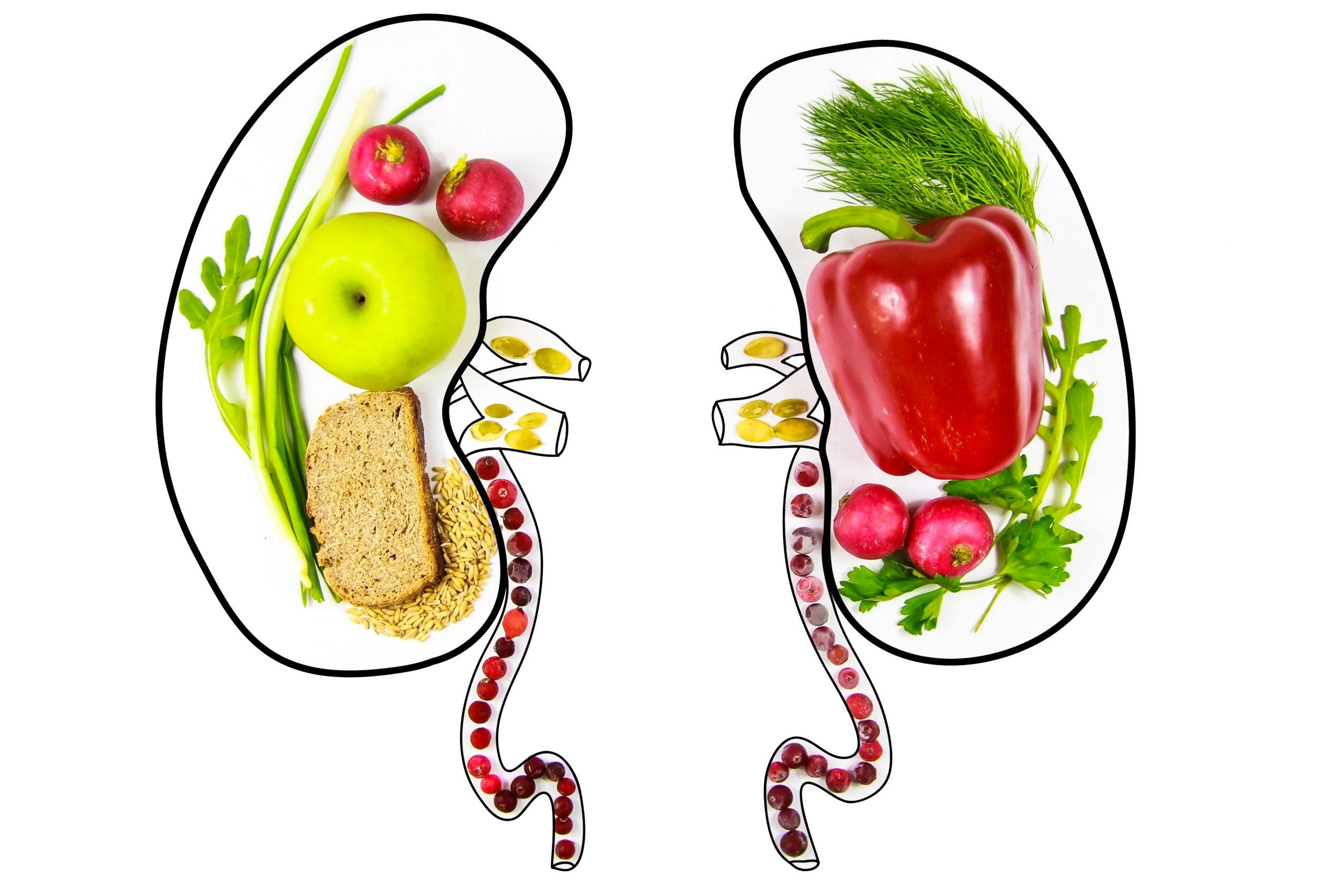 gezonde nieren