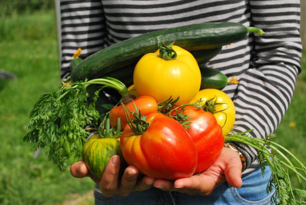 rauwe groenten